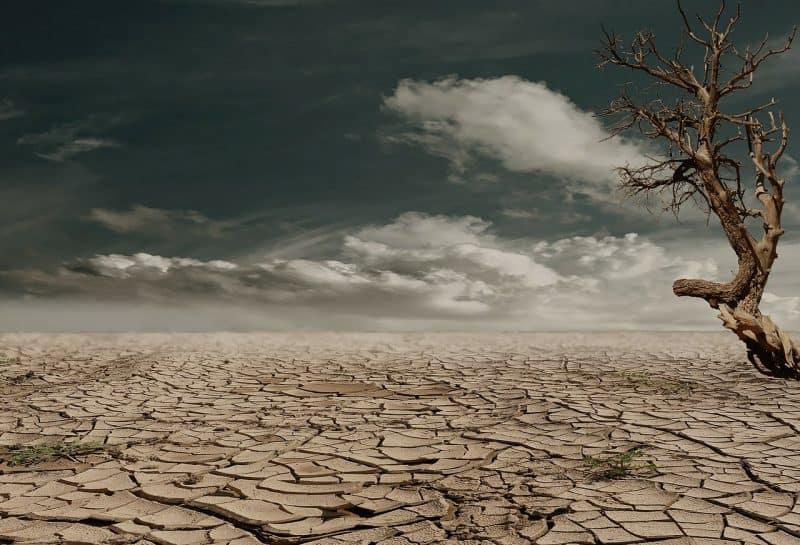 Wüste und Hunger